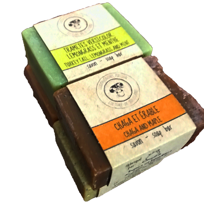Multiple Medicinal Mushrooms Soaps Made From tincture and extractions
